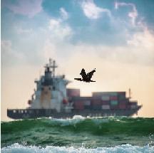 مدیریت صادرات